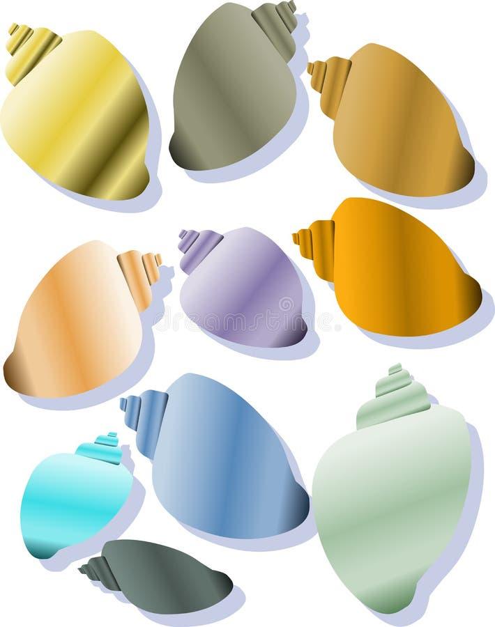 Download Shells stock vector. Illustration of seaside, tide, spiral - 11022362
