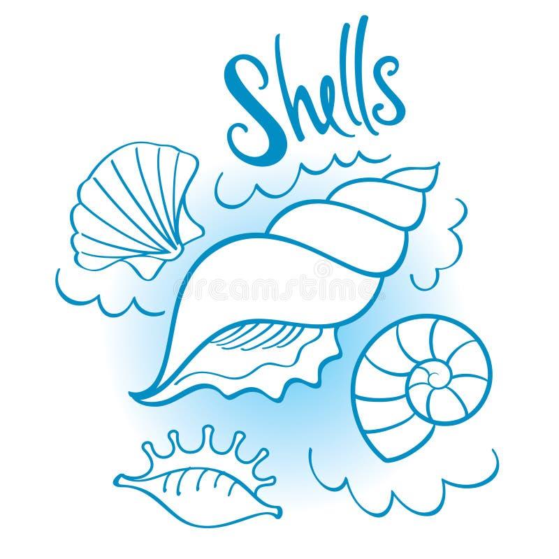 Download Shells stock vector. Image of shellfish, science, ocean - 26288838
