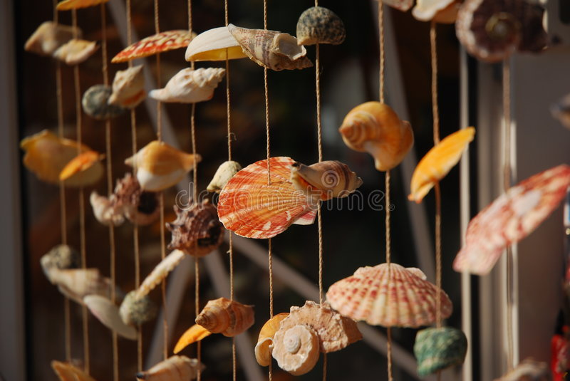 Download Shells stock image. Image of sand, shell, colour, summer - 3069867