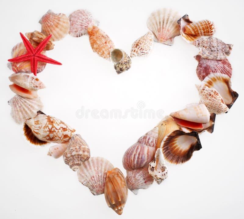 Shells in einer Form des Inneren des Valentinsgrußes lizenzfreies stockbild