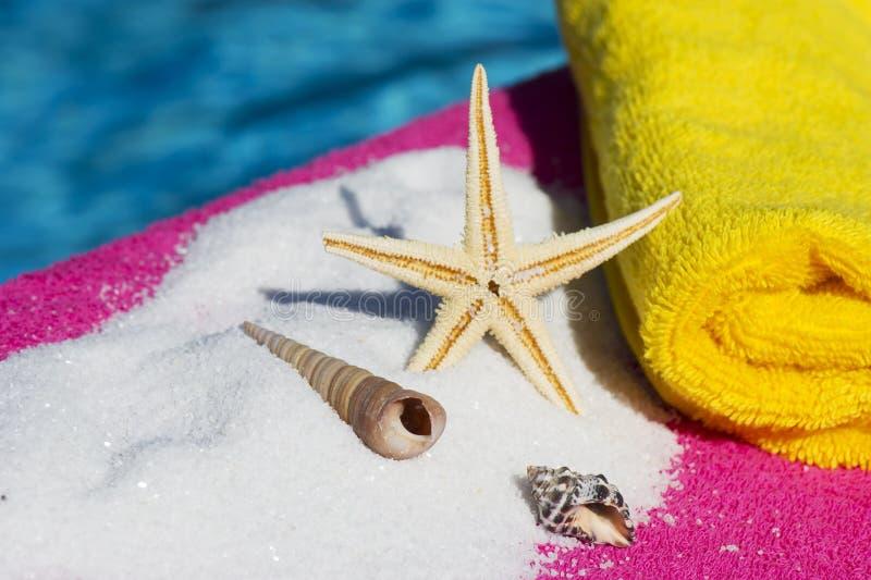 Shells en overzeese ster dichtbij water stock afbeeldingen