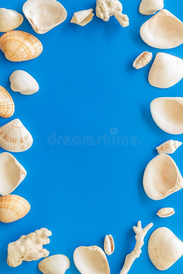 Shells frame for beach pattern on blue background top view space for text royalty free stock photos