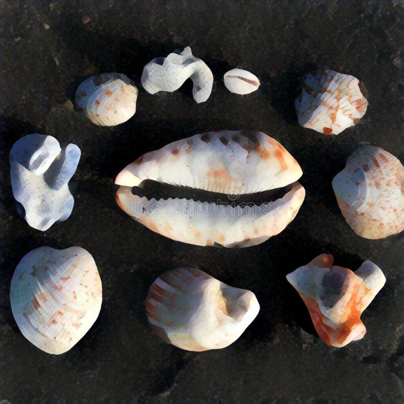 Shells inzameling op zwarte achtergrond De zomervakantie door het overzeese geheugen stock illustratie