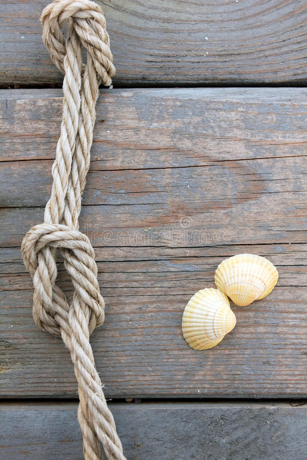 Download Shells And Marine Rope Stock Photo - Image: 25291120