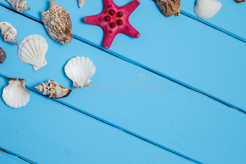 Shells on the old blue wooden boards. royalty free stock photos