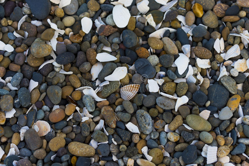 Shells and Pebbles stock photography