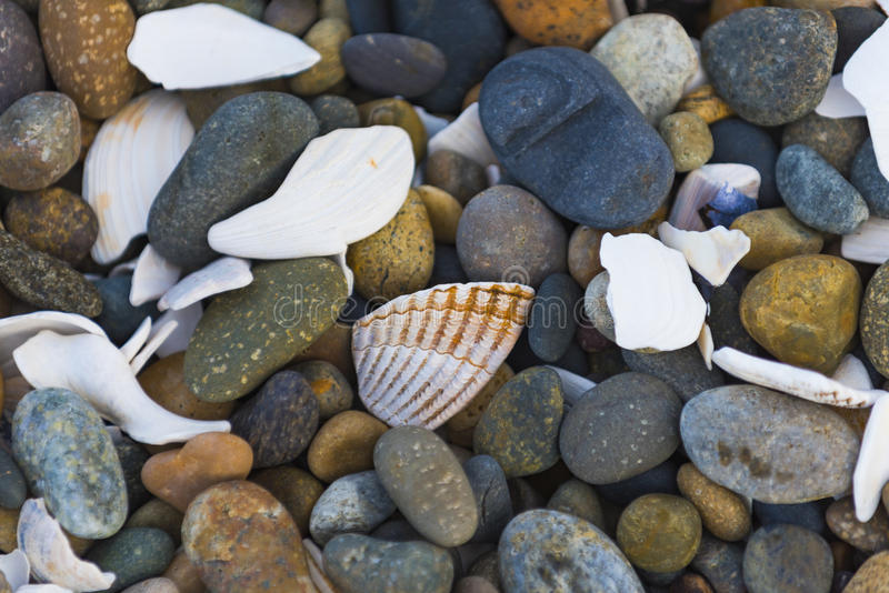 Shells and Pebbles royalty free stock images