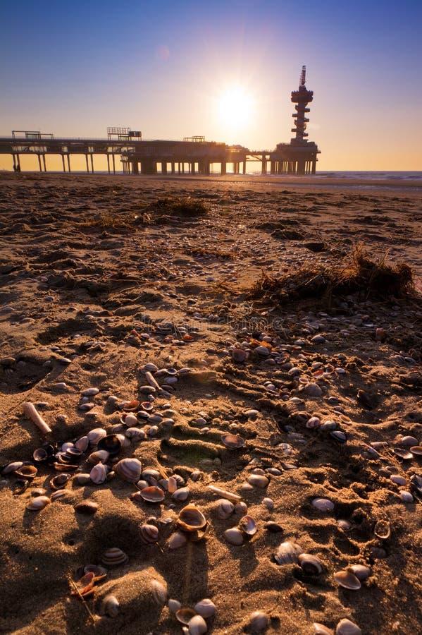 Download Shells pier stock image. Image of serene, color, recreation - 26451031