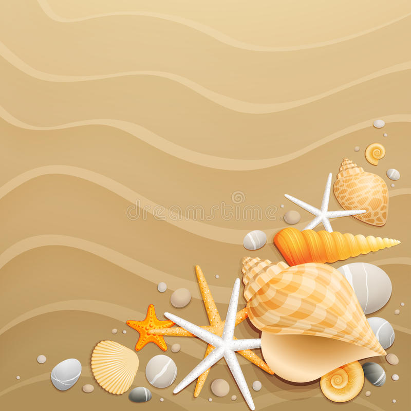 Shells and starfishes on sand background stock illustration