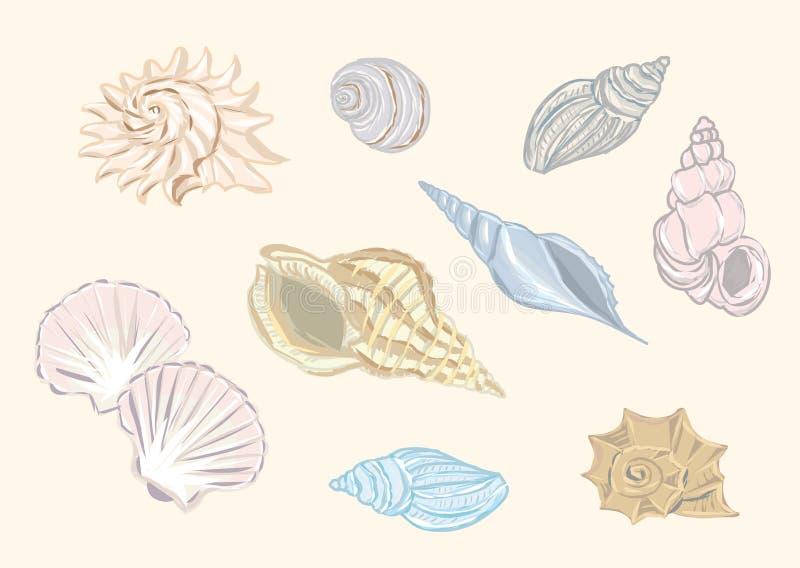 Shells vectorreeks stock illustratie