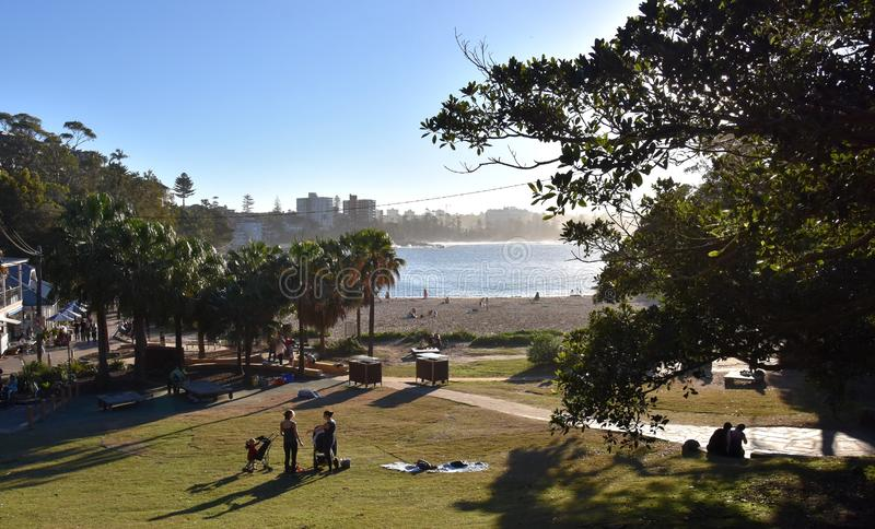 Shelly Beach Community Notice Board Editorial Photography Image Of Lifestyle Local 187790092