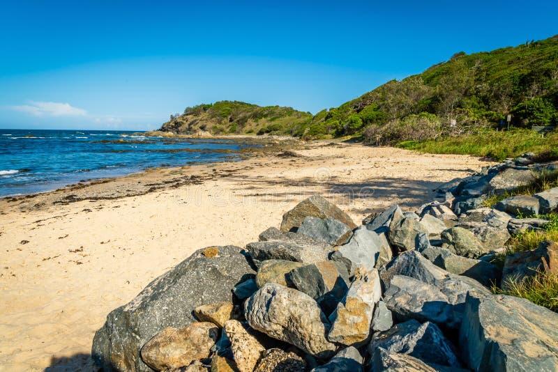 Shelly Beach en el puerto Macquarie en Australia imagen de archivo