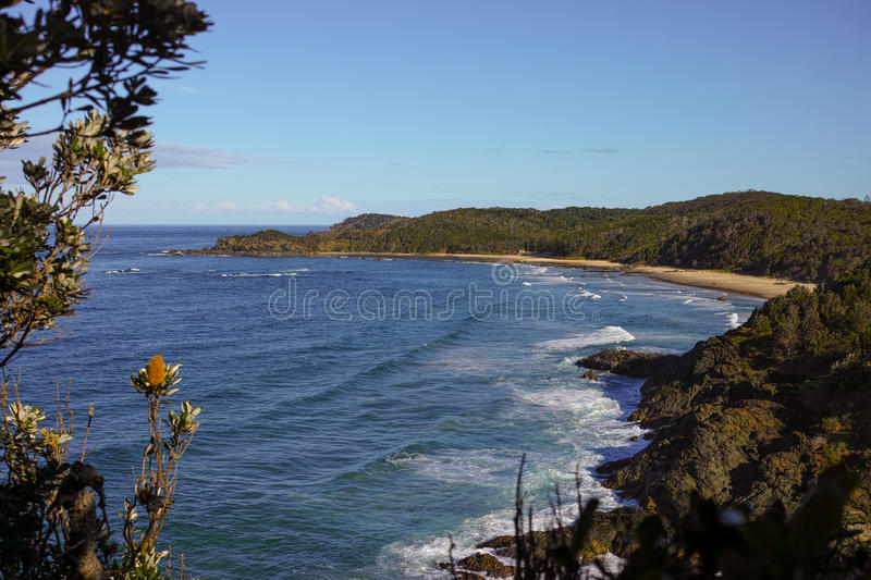 Shelly Beach Seen de la cabeza de Nobbys en el puerto Macquarie Australia foto de archivo