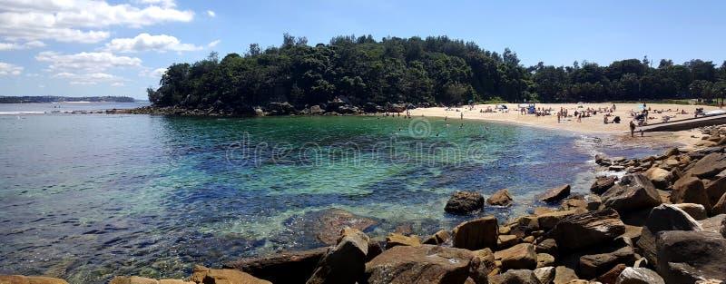 Shelly strand i Sydney, Australien royaltyfri foto