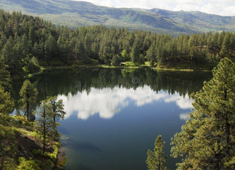 Shelona湖科罗拉多圣胡安森林 免版税图库摄影
