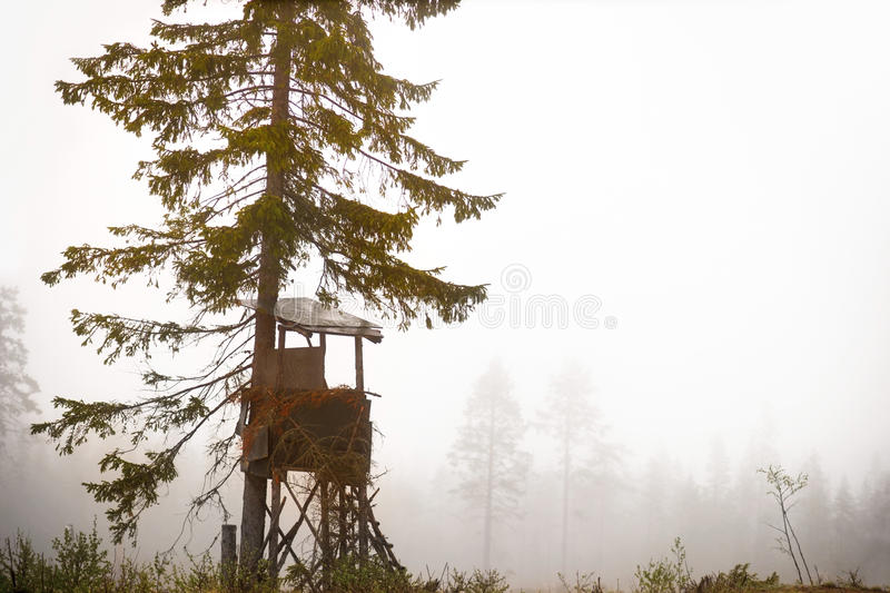 Shelter for moose hunting. Shelter built for hunting moose in autumn in clearing of scandinavian forest on foggy day royalty free stock photography