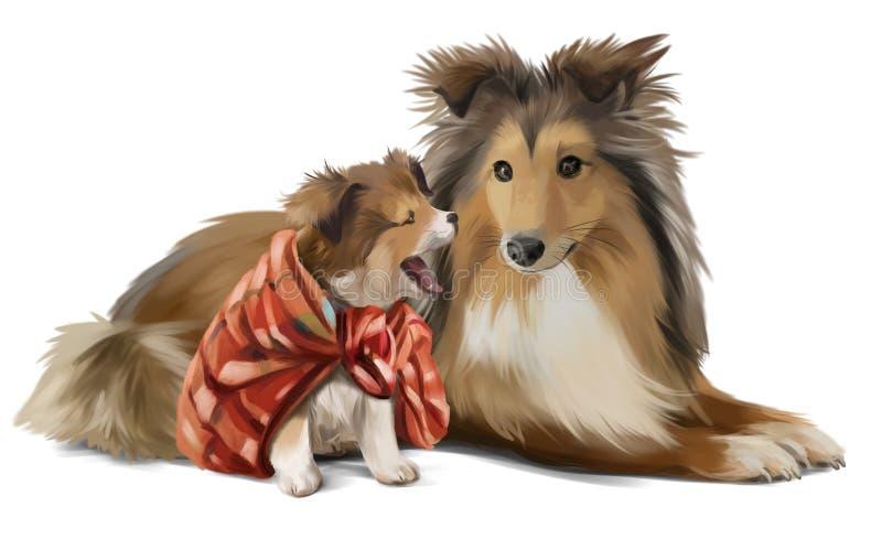 Sheltie матери и сына иллюстрация штока