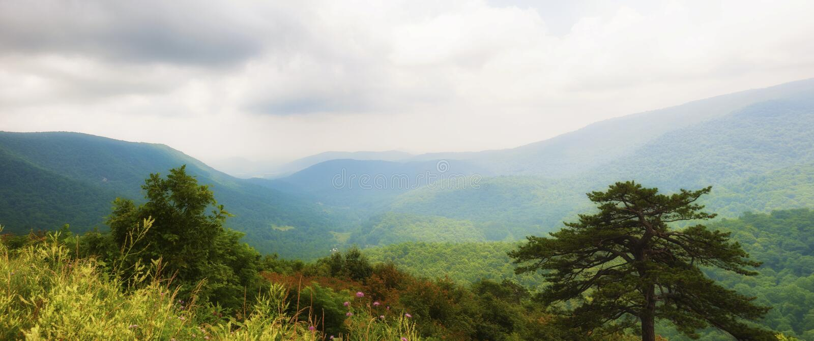 Shenandoah National Park Views along skyline Drive. Panorama View of the landscape in Shenandoah National Park in Virginia runs along the Blue Ridge Mountains in stock photos