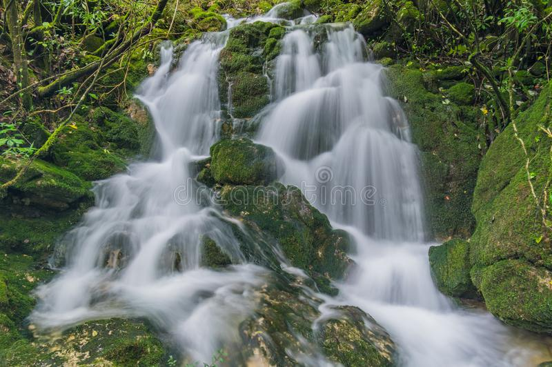 ShenNongJia Tiansheng bridge waterfall and stream. Hubei shennongjia scenic spot.Shennongjia forest region: to manifest the precious value of ecological stock photos