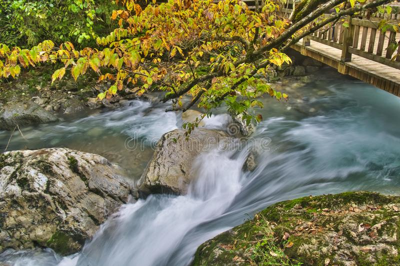 ShenNongJia Tiansheng bridge waterfall and stream. Hubei shennongjia scenic spot.Shennongjia forest region: to manifest the precious value of ecological royalty free stock photos