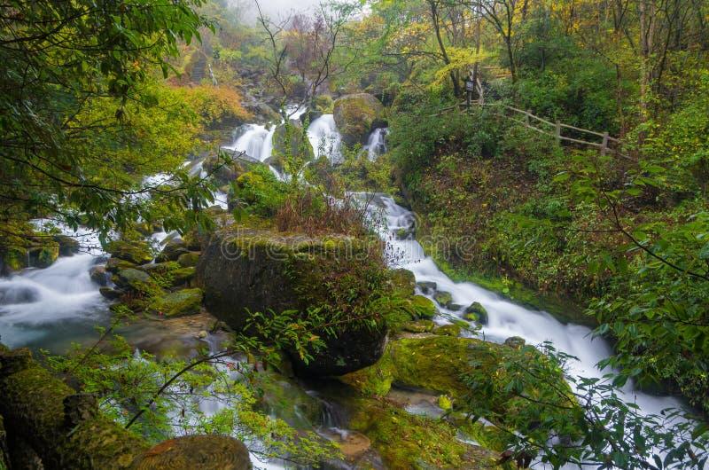 ShenNongJia xiangxiyuan zdjęcie stock