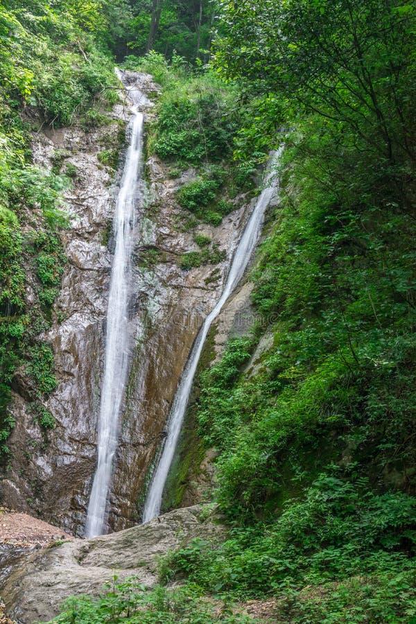 ShenNongJia xiangxiyuan. Hubei shennongjia scenic spot.Shennongjia forest region: to manifest the precious value of ecological protection and green development royalty free stock photography