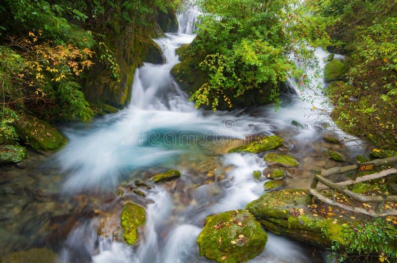 ShenNongJia xiangxiyuan. Hubei shennongjia scenic spot.Shennongjia forest region: to manifest the precious value of ecological protection and green development royalty free stock image