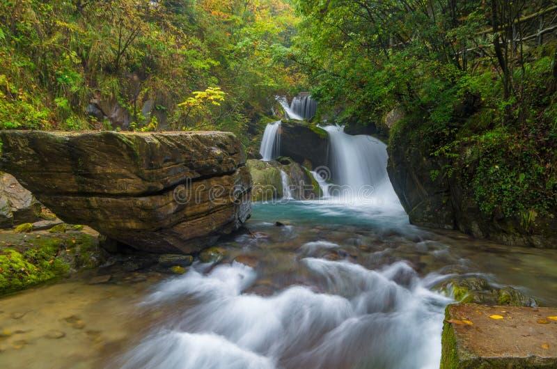 ShenNongJia xiangxiyuan. Hubei shennongjia scenic spot.Shennongjia forest region: to manifest the precious value of ecological protection and green development royalty free stock photo
