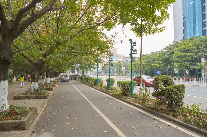 Shenzhen royaltyfria bilder