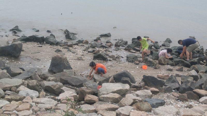 Shenzhen, China: o jogo das mulheres e de crianças na praia ou na captura crabs fotografia de stock