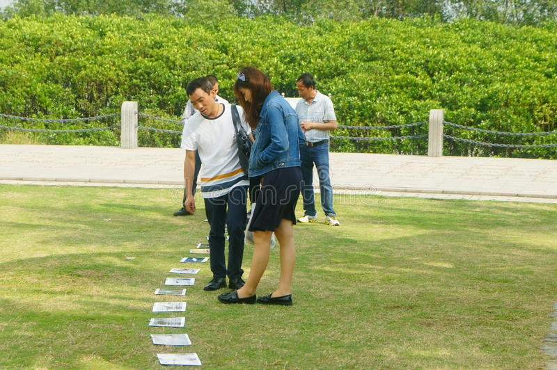 Shenzhen, China: photos of birds, on the lawn, are given away free to tourists. Photos taken by a photographer at the Shenzhen Bay Park on the lawn, if you like stock images