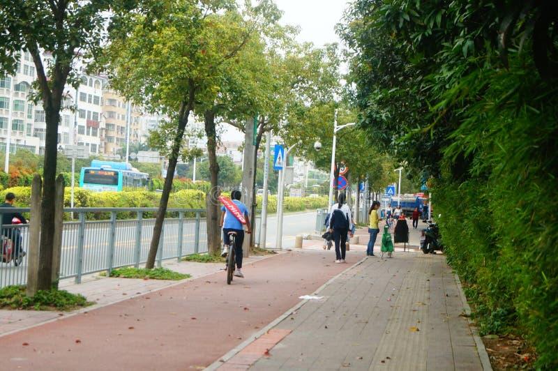 Shenzhen, China: students go to school by bike. Students go to school by bike in Shenzhen, china royalty free stock image