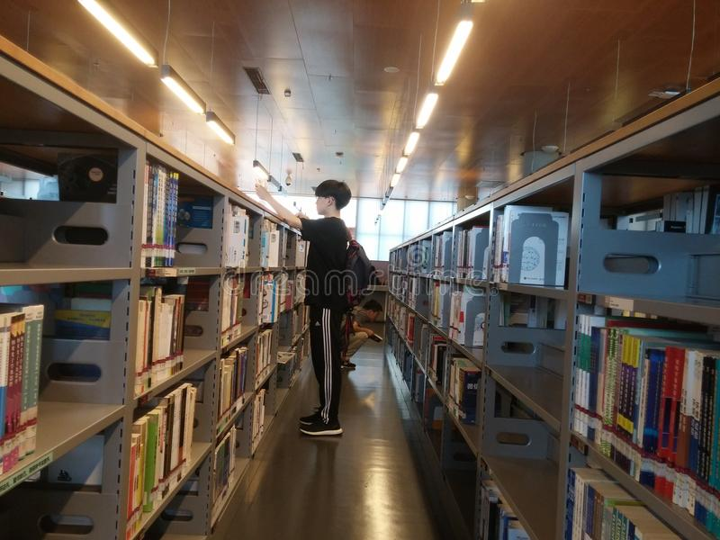 Shenzhen, Chiny: biblioteki, samiec i kobiety czytelnicy, czytają fotografia royalty free