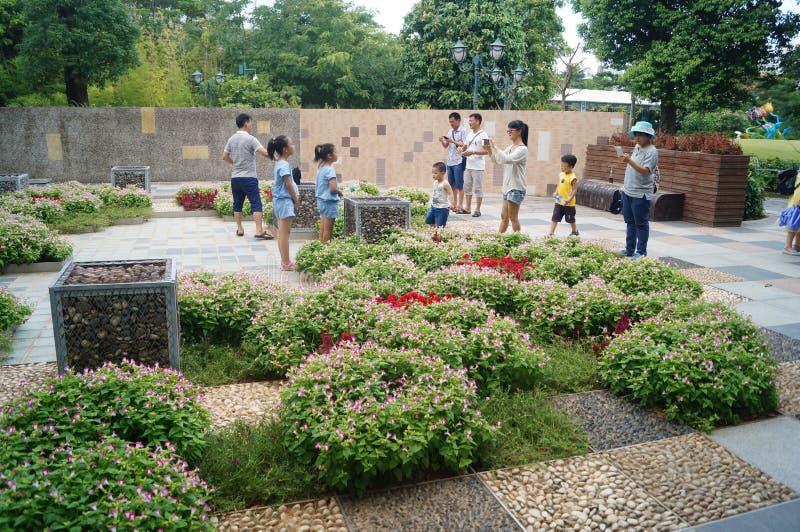 Shenzhen, Chiny: Holandia kwiatu Grodzki Sceniczny teren fotografia stock
