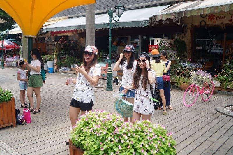 Shenzhen, Chiny: Holandia kwiatu Grodzki Sceniczny teren obraz royalty free