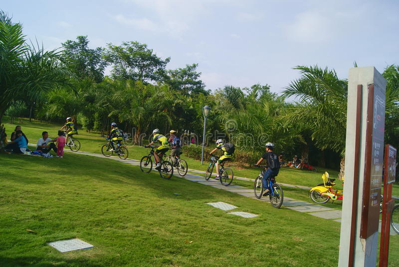 Shenzhen, porcelaine : visiteurs de parc de baie de Shenzhen pour monter une bicyclette photos stock