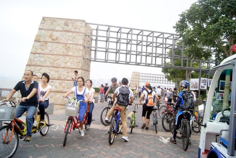 Shenzhen, porcelaine : visiteurs de parc de baie de Shenzhen pour monter une bicyclette photo libre de droits