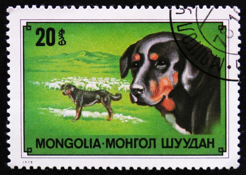 Shepherd dog breed, circa 1978. MOSCOW, RUSSIA - APRIL 2, 2017: A post stamp printed in Mongolia shows Shepherd dog breed, circa 1978 stock photography
