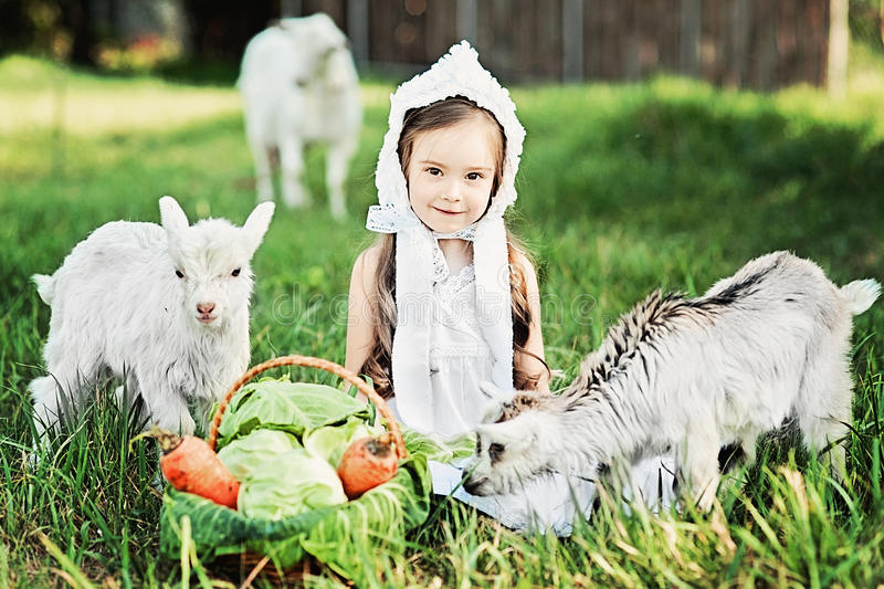 A shepherd girl in a white dress and bonnet feeds a goat with cabbage leaves. Child feeding goat in spring field royalty free stock images