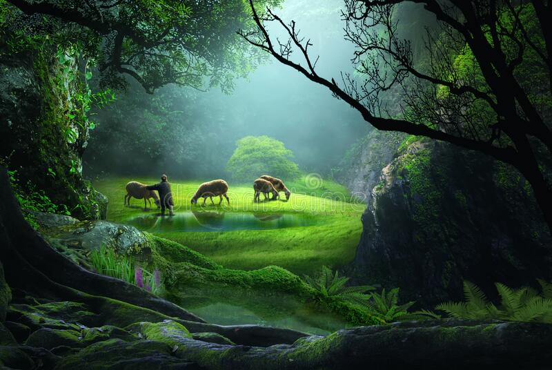 Shepherd in the middle of a forest with a meadow stock images