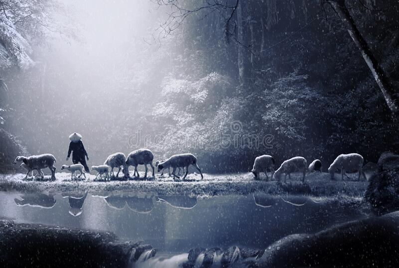 Shepherd in the middle of a forest royalty free stock photography