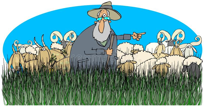 Shepherd with sheep and goats. This illustration depicts a shepherd standing in tall grass with sheep and goats vector illustration