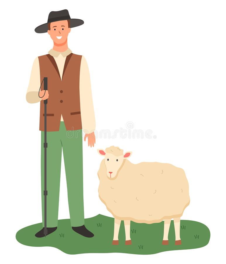 Farmer with Sheep on Pasture, Farming Male Working. Shepherd with sheep vector, isolated male wearing uniform and hat on head holding wooden stick and tending royalty free illustration