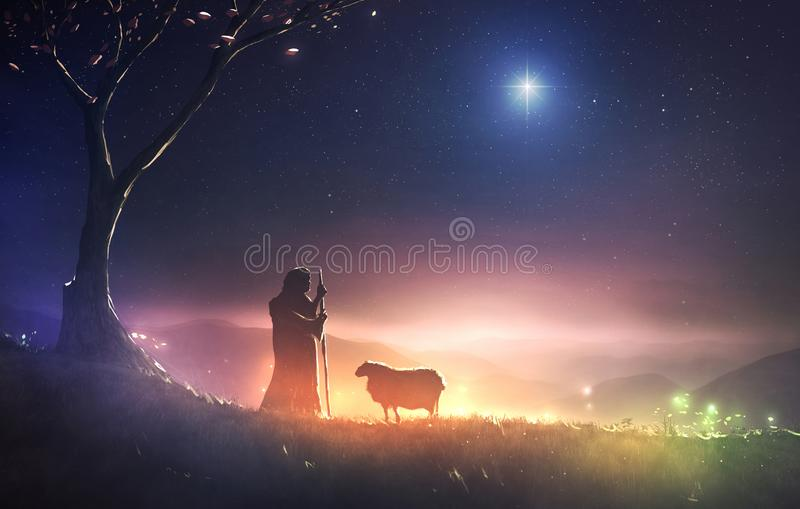 Shepherd and star of Bethlehem. A shepherd watching his sheep under the star of Bethlehem vector illustration