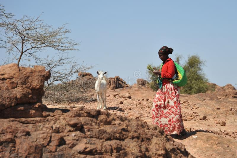 Shepherdess in area of Las Gil royalty free stock photos