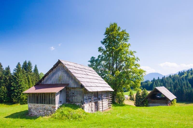 Shepherds cabanas em Pokljuka fotografia de stock royalty free