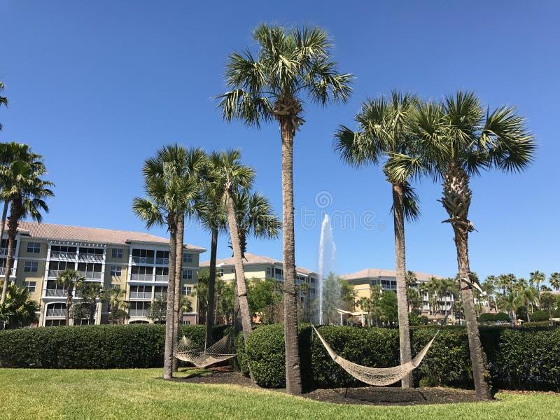 Sheraton Vistana Villages, Orlando, Florida. The Sheraton Vistana Villages in Orlando, Florida royalty free stock images