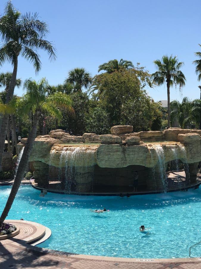 Sheraton Vistana Villages Pool, Orlando, Florida. The Sheraton Vistana Villages in Orlando, Florida stock photo