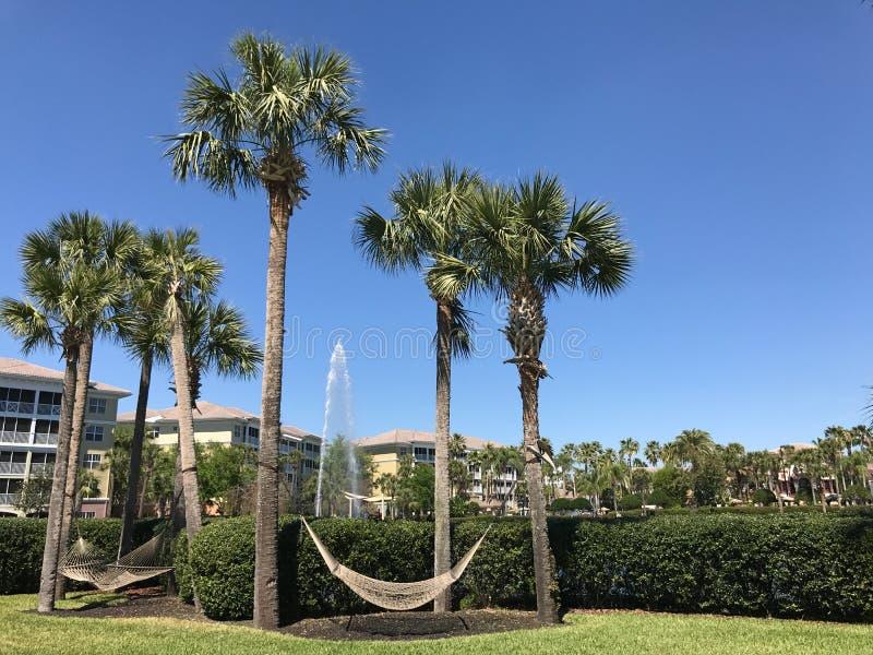 Sheraton Vistana Villages, Orlando, la Florida foto de archivo libre de regalías
