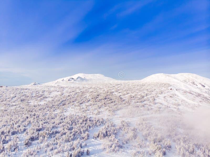 Sheregesh, Kemerovo, Rússia, montanhas do zangão da vista aérea e floresta, imagens de stock royalty free
